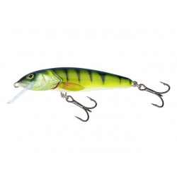 Salmo Minnow M5F PH