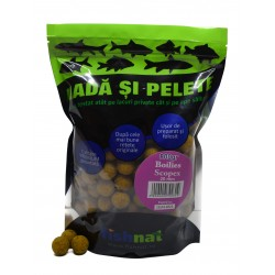 Fishnat Boilies Scopex 20 mm 800 gr